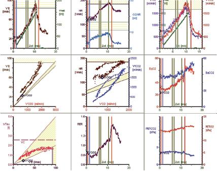 Entwicklung-der-9−Felder-Grafik